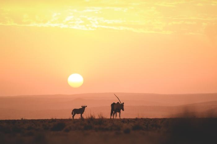 Namibia16-8.jpg